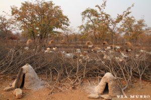 Himba wioska